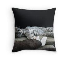Too Hot Throw Pillow