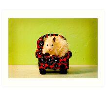Comfy Hamster Art Print