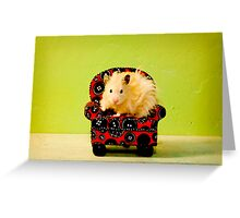 Comfy Hamster Greeting Card