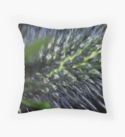 Native Australian Throw Pillow