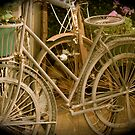 Old Bikes by Maximus