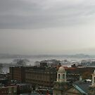 FOGGY PANORAMA by Lori Deiter