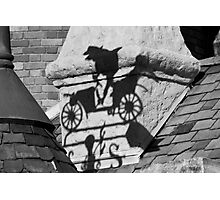Mr. Toad's Shadow Photographic Print