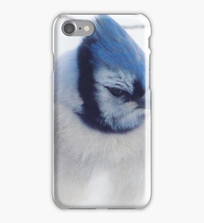 A  Blue Afternoon iPhone Case/Skin