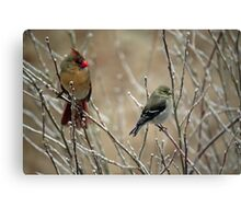 Claudia and Goldie Canvas Print