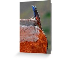 Im Blue Over You, Too !!! Greeting Card