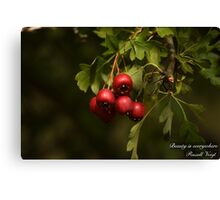 Beauty Is Everywhere!  Canvas Print