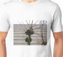 Tree limbs with moss Unisex T-Shirt