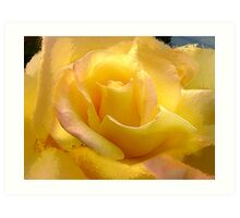 Yellow Rose by the Liquor Store Art Print