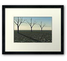 Environmental Disaster Framed Print