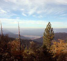 Sierra Foothills by Laurie Puglia