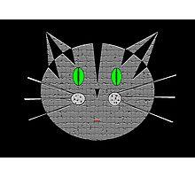 Kute Kitty Meow Meow Photographic Print