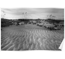 Beach in Black and White Poster