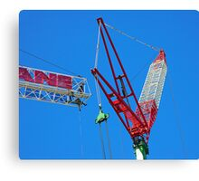 Just hanging about Canvas Print