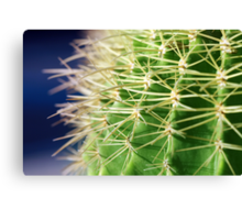 Spiky Canvas Print