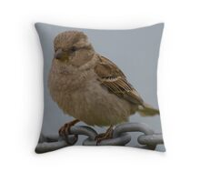 Little Sparrow Throw Pillow