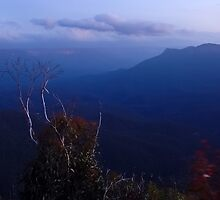 Blue Skies - Blue Mountains NSW by Dilshara Hill