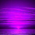 Sunset Pink Purple Dance by ienemien