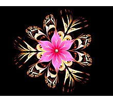 Tropical Blossom Photographic Print