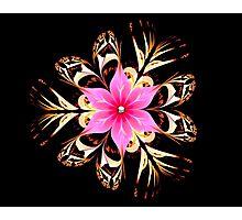 Tropical Blossom Photographic Print