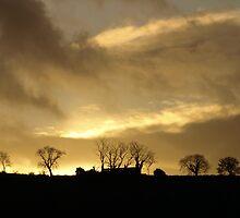 Above Glynn. by Bern McAllister