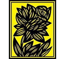 Penunuri Daffodil Flowers Yellow Black Photographic Print