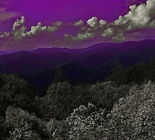 Purple Mountain Majesty 2 by Lisa Taylor