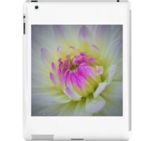 Glorious Appearing; White Dahlia with Lavender Hued Center iPad Case/Skin