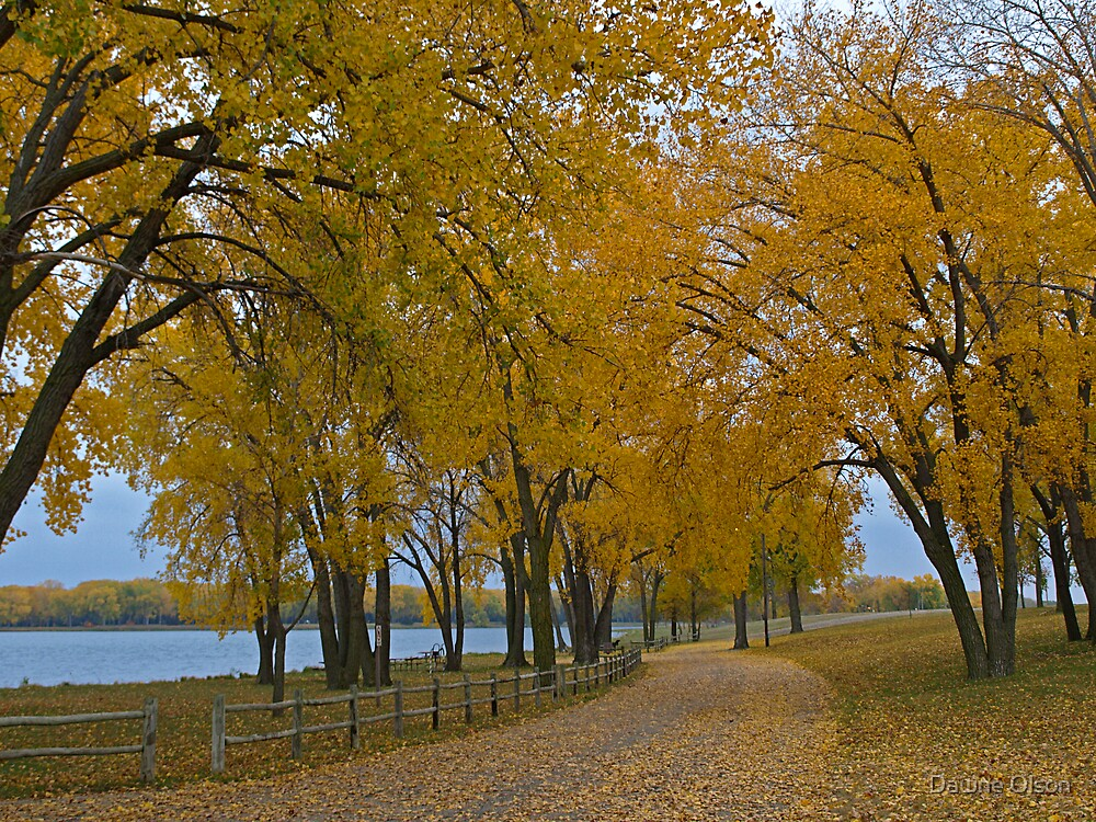 Lake Yankton in Autumn by Dawne Olson