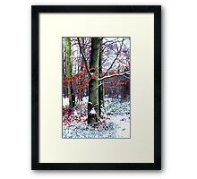 Winters Leaves Framed Print