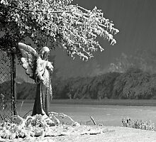 Angel in the Sneaux by Bonnie T.  Barry