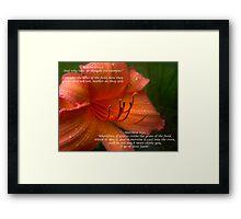 Matthew 6:28 Framed Print