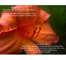 Matthew 6:28 Photographic Print