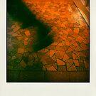 Faux-polaroids - Housework Dance #1 - by Pascale Baud