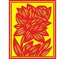 Fingado Daffodil Flowers Yellow Red Photographic Print