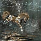 Bucking Mare by Kimberly Palmer