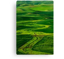 Ribbons of Green Canvas Print