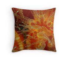 Stoney Coral Throw Pillow
