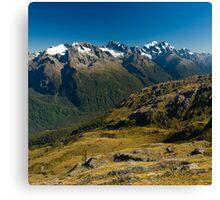 scenic view over fiordland Canvas Print