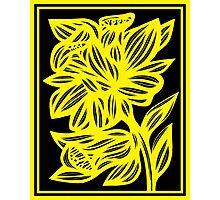 Holak Daffodil Flowers Yellow Black Photographic Print