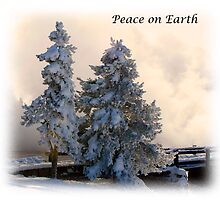 Peace on Earth by Virginia Maguire