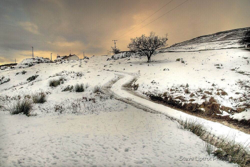 Winter Scene near Ingleton by Steve  Liptrot