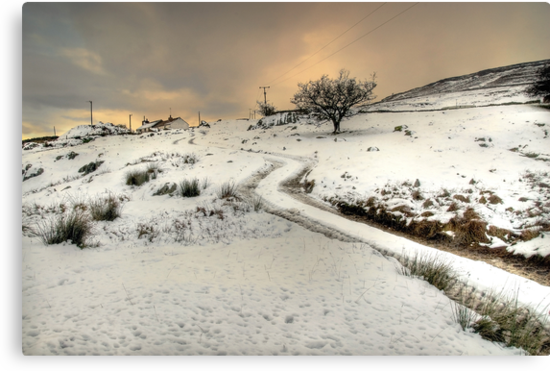 Winter Scene near Ingleton by Steve  Liptrot