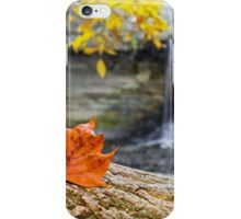 Autumn Leaf and Waterfall iPhone Case/Skin