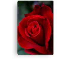 imperial red Canvas Print