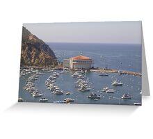 Catalina Harbor  Greeting Card