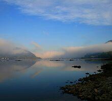 Foggy View by Lori Deiter