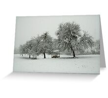 A white morning in the snow Greeting Card