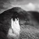 Untitled by Steve Jensen
