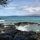Ahihi Bay, Maui, Hawaii by Teresa Zieba